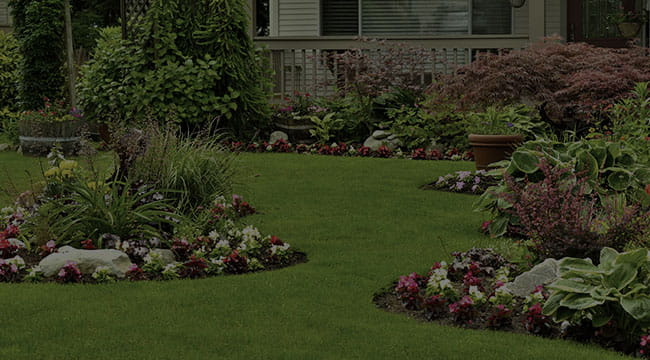 Milwaukee Landscape Design